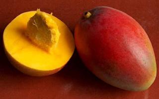 Dulces Mangos