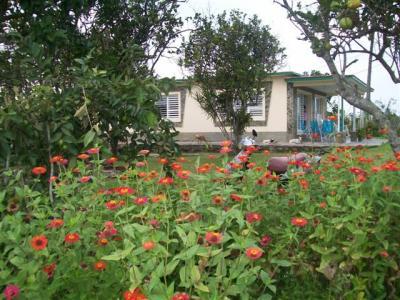 Se RENTA CASA en el campo, en La Mulata, Pinar del Rio